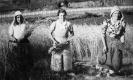 BITORI-ETXE:  IRASTORTZA MURUA  FAMILIA
